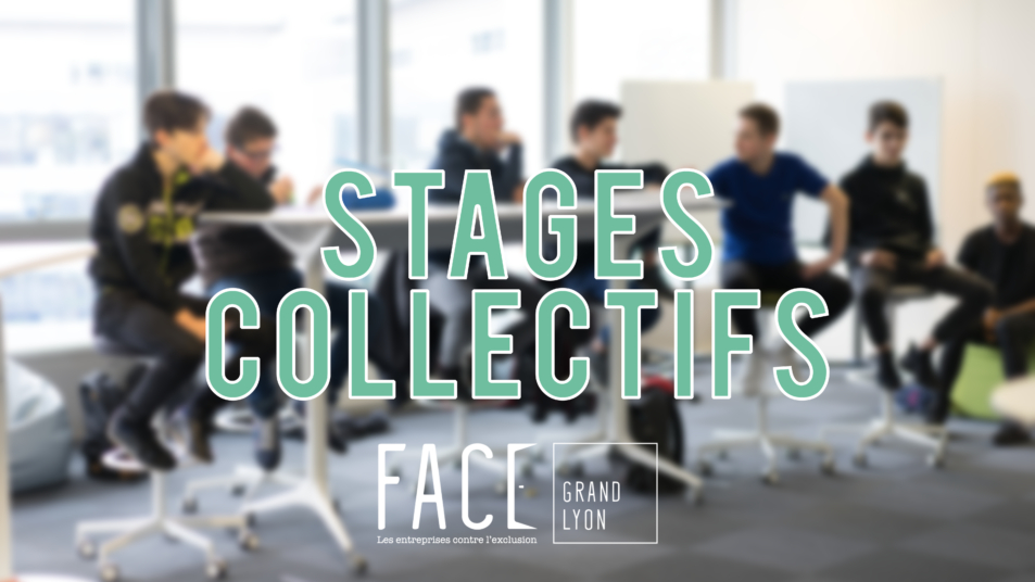 stages collectifs FACE Grand Lyon